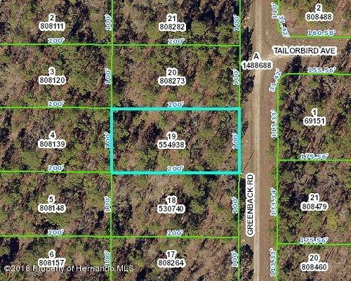 0 Greenback Road, Brooksville, FL 34614