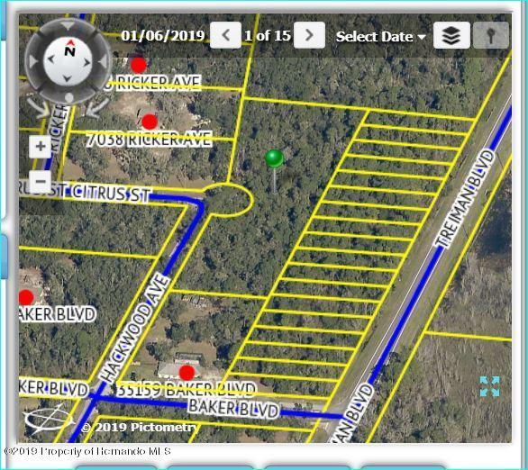35163 Citrus Street