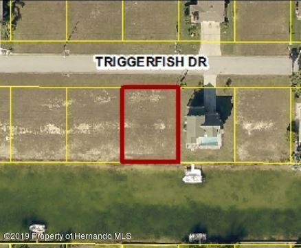 0 Triggerfish Drive Lot 50