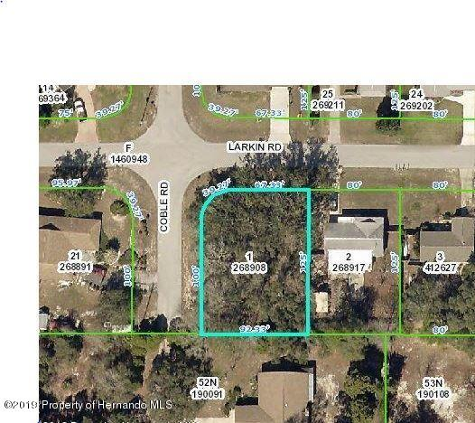 1098 Coble Road, Spring Hill, FL 34608