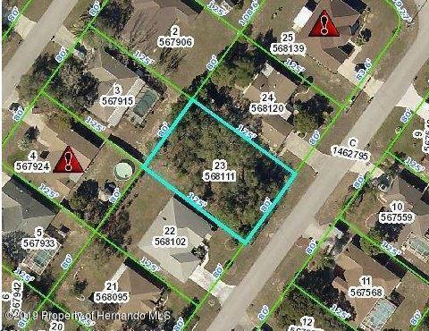 4045 Montano Avenue, Spring Hill, FL 34609