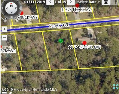 00 Flock Avenue, Weeki Wachee, FL 34613