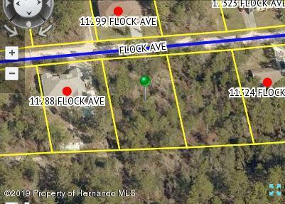 Listing Details for 0 Flock Avenue, Weeki Wachee, FL 34613