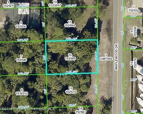 Listing Details for 0 Maplewood Drive, Hernando Beach, FL 34607