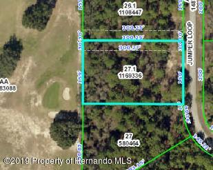 Details for 0 Jumper Loop (divine Lot 8), Brooksville, FL 34609