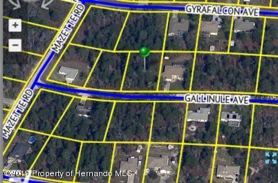 Lot 19 Gallinule Avenue