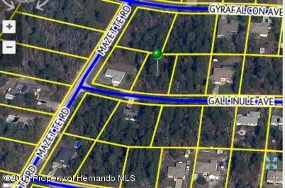 Lot 20 Gallinule Avenue