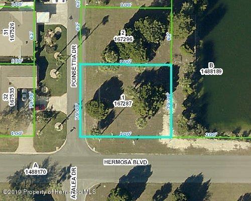 Listing Details for 3332 Poinsettia Drive, Hernando Beach, FL 34607