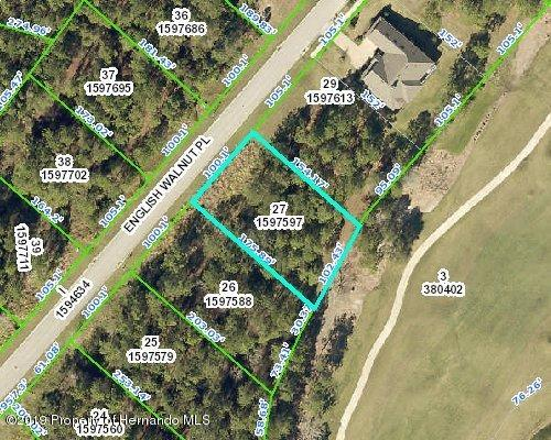 0000 English Walnut Place, Brooksville, FL 34601