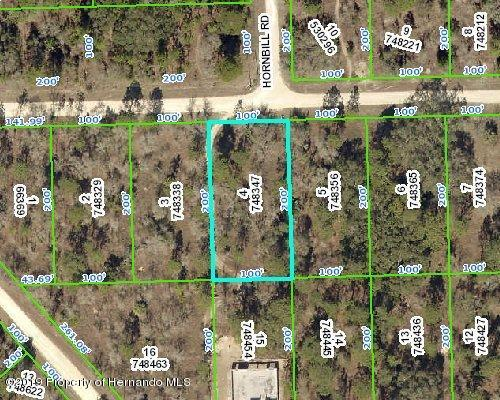 0 Piping Plover Avenue, Weeki Wachee, FL 34614