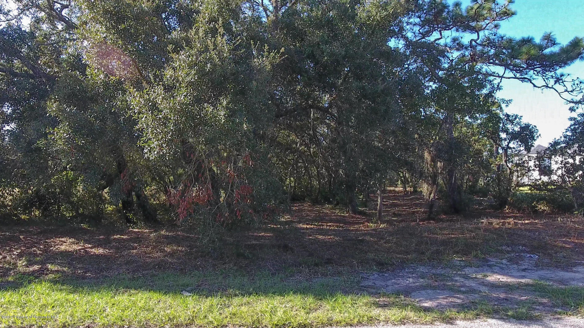 Listing photo id 3 for 0 Scenic Lake Drive Lot 6