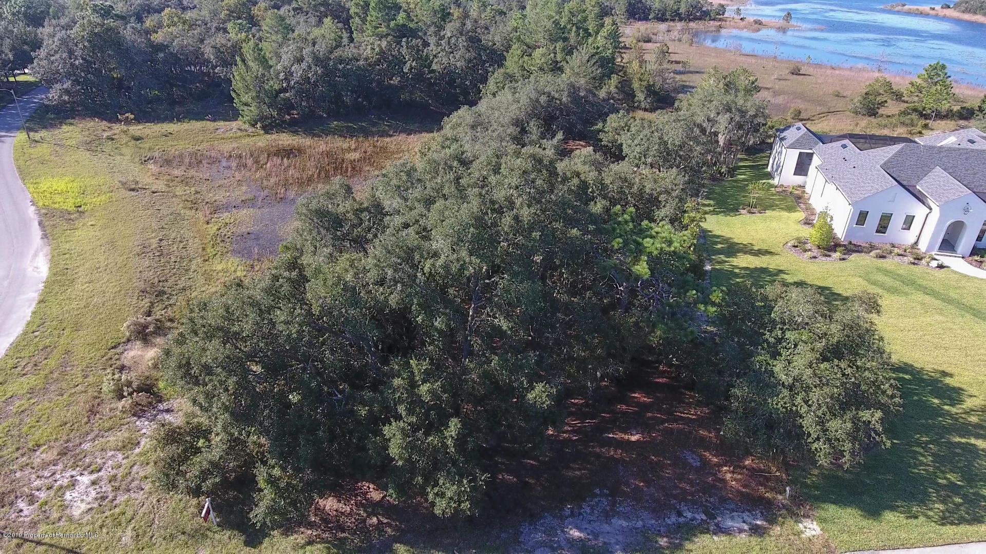 Details for 0 Scenic Lake Drive Lot 6, Weeki Wachee, FL 34613