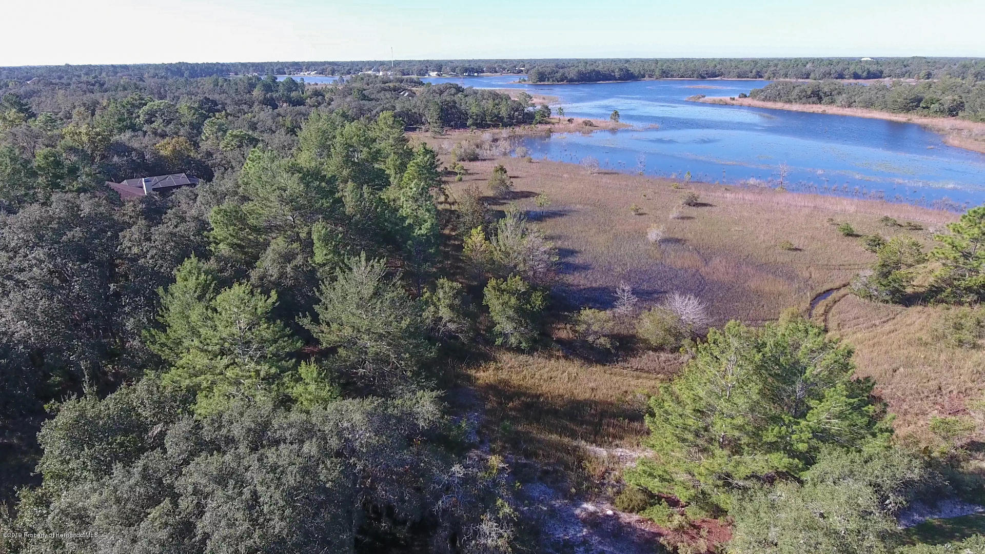 Listing photo id 11 for 0 Scenic Lake Drive Lot 6