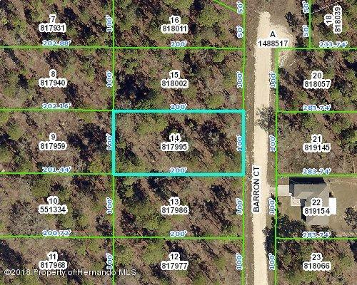 0 Barron Court, Weeki Wachee, FL 34614