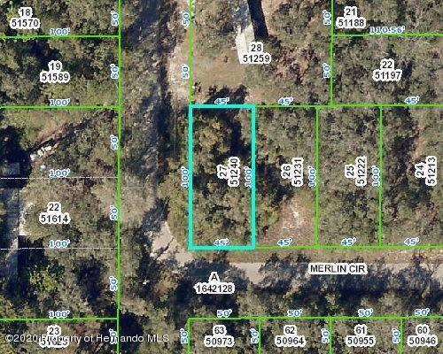 0 Merlin Circle, Ridge Manor, FL 33523
