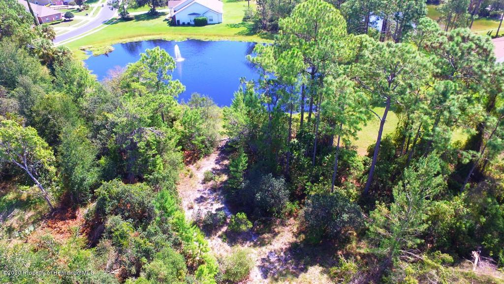 0 Brightwaters Court, Weeki Wachee, FL 34607