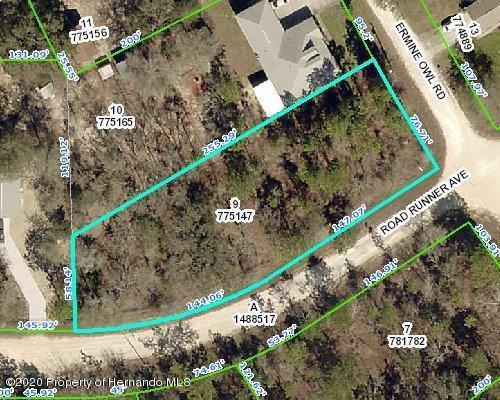 Listing Details for 13231 Road Runner Avenue, Weeki Wachee, FL 34614