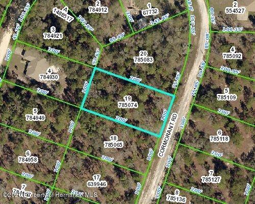 Details for Lot 19&20 Cormorant Road, Brooksville, FL 34614