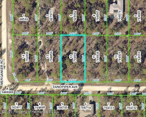 0 Sandpiper Avenue, Weeki Wachee, FL 34614