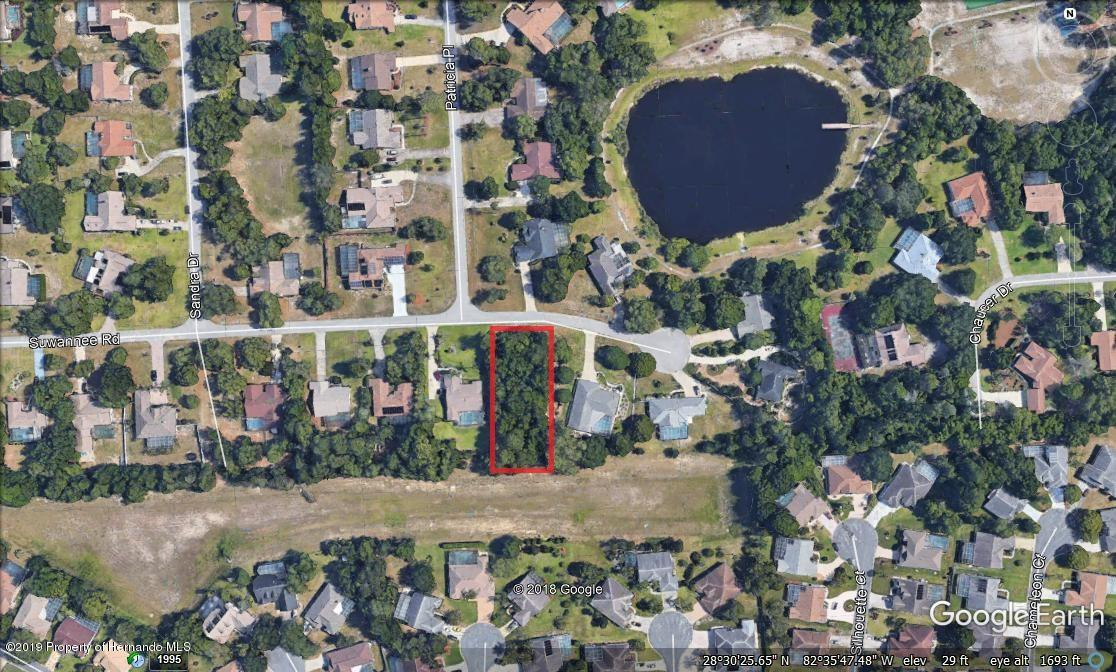 Details for 00 Suwannee Road Lot 19, Weeki Wachee, FL 34607