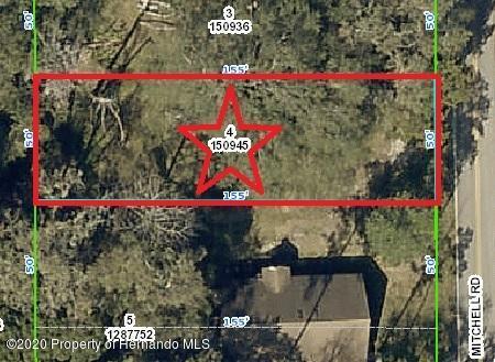 Details for 0 Mitchell Road, Brooksville, FL 34601