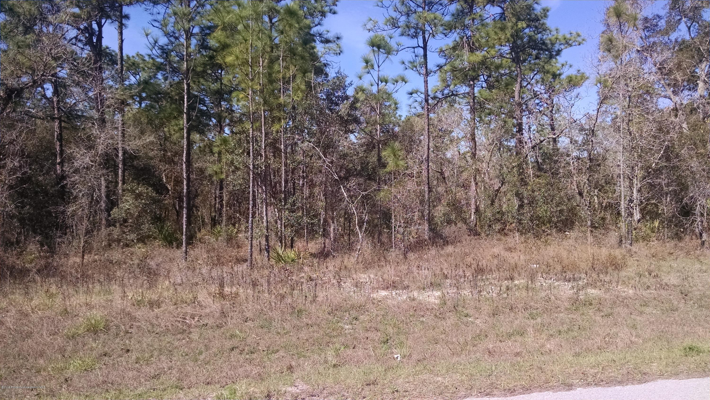 Listing Details for 0 Mt Sparrow Road, Weeki Wachee, FL 34614
