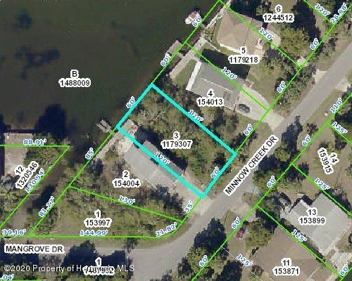 Details for 00 Minnow Creek (lot 3), Hernando Beach, FL 34607