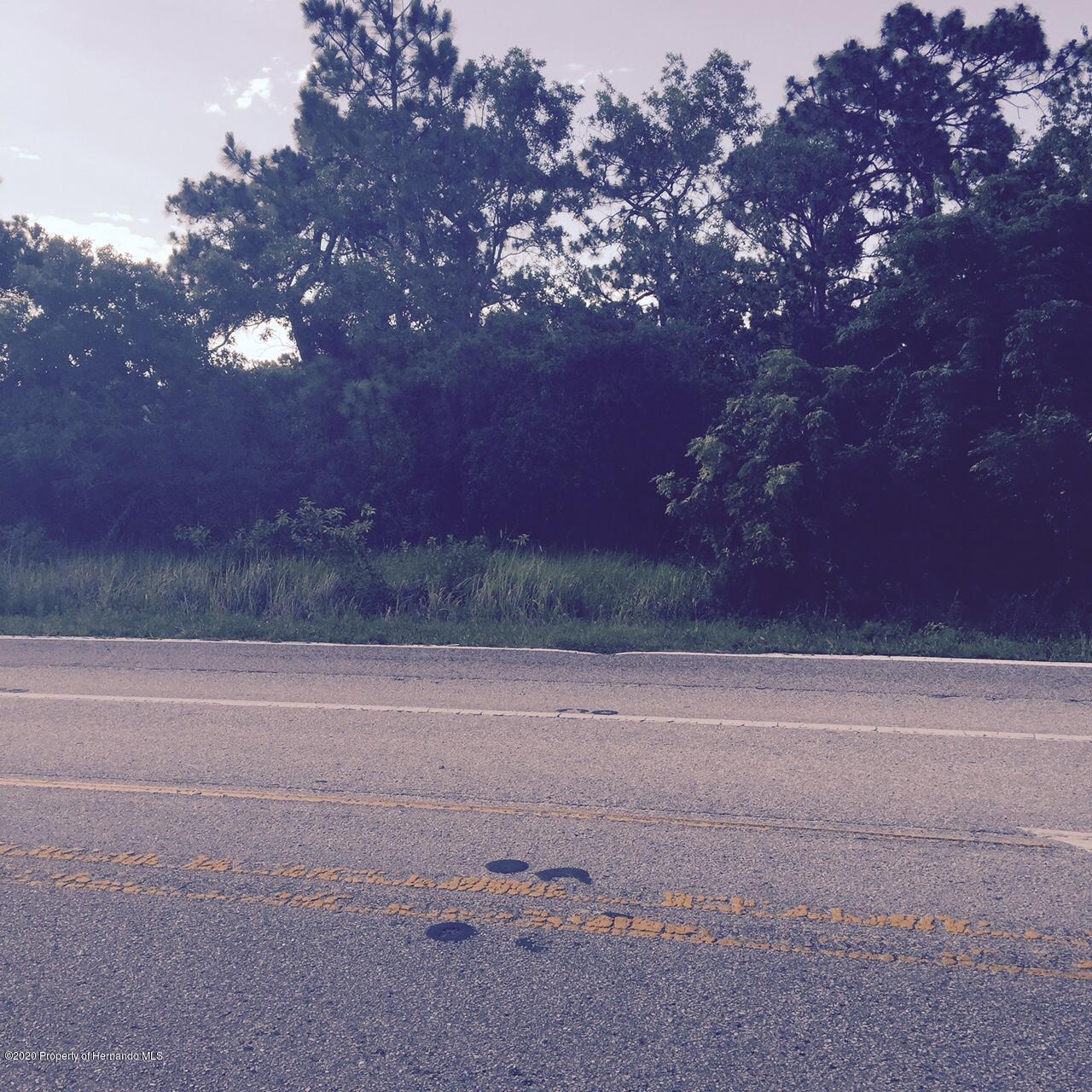 Listing Details for 0 Jaqueline Road, Brooksville, FL 34613