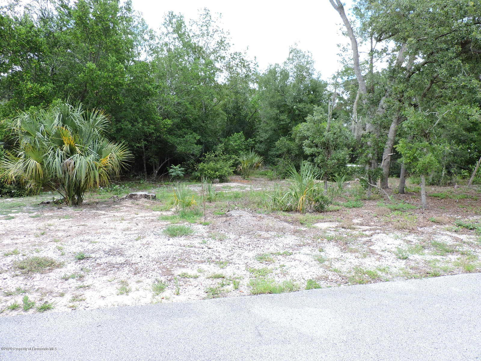 Details for 0 Chaucer Drive Lot 1, Weeki Wachee, FL 34607
