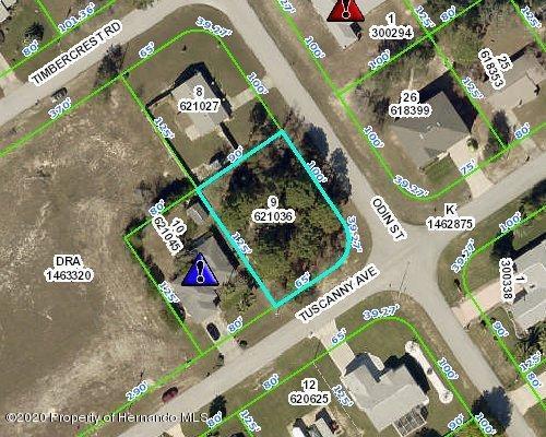 Listing Details for 4447 Odin Street, Spring Hill, FL 34608