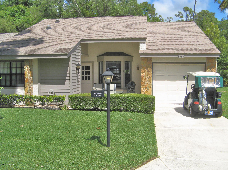6650 Brambleleaf Drive, Spring Hill, FL 34606
