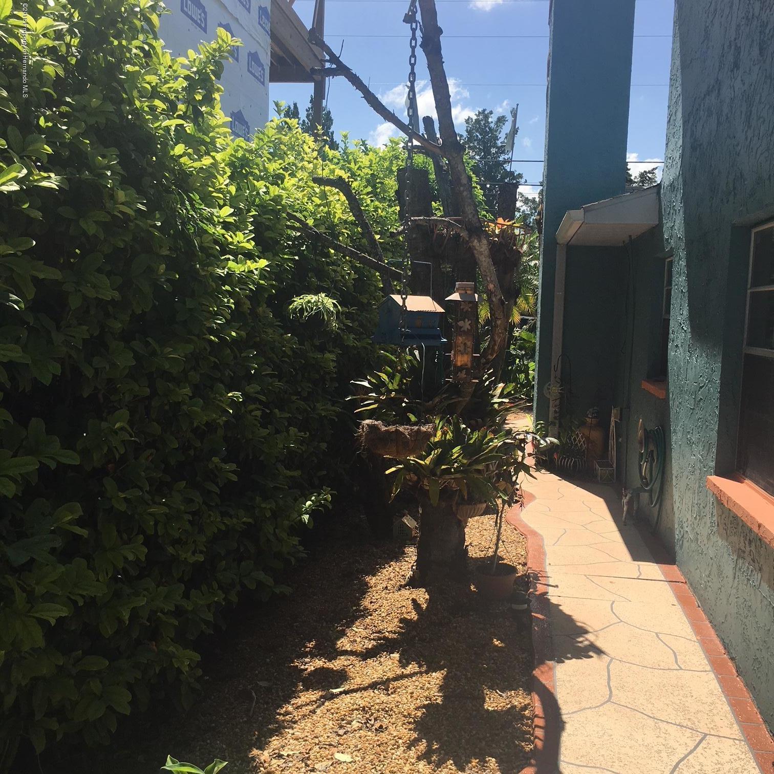 Image 6 For 3507 Companero Entra