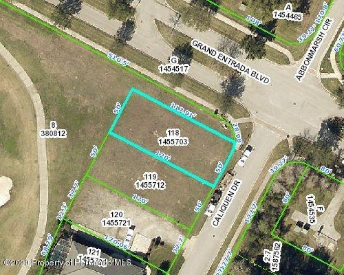 Details for 0 Caliquen Drive, Brooksville, FL 34604