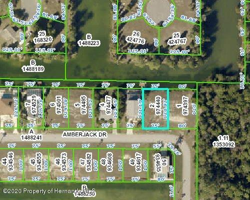 Details for 0 Amberjack Drive, Hernando Beach, FL 34607