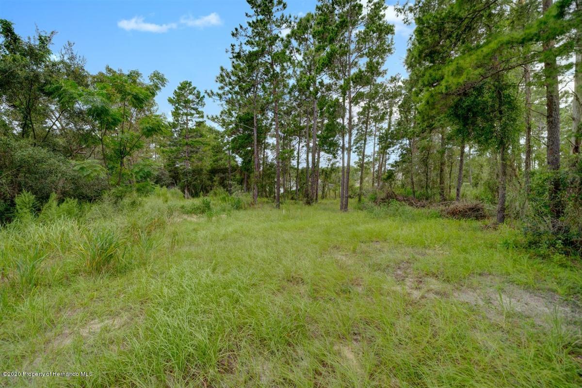 Image 15 For Lot 88 Whisper Ridge Trail