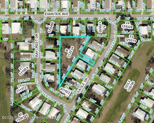 Details for 0 Eagle Drive, Brooksville, FL 34613