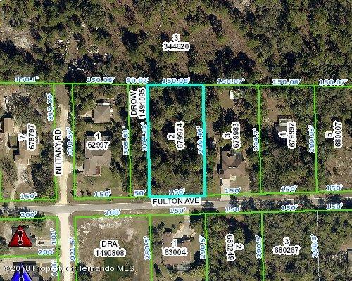Details for 0 Fulton Avenue, Weeki Wachee, FL 34613