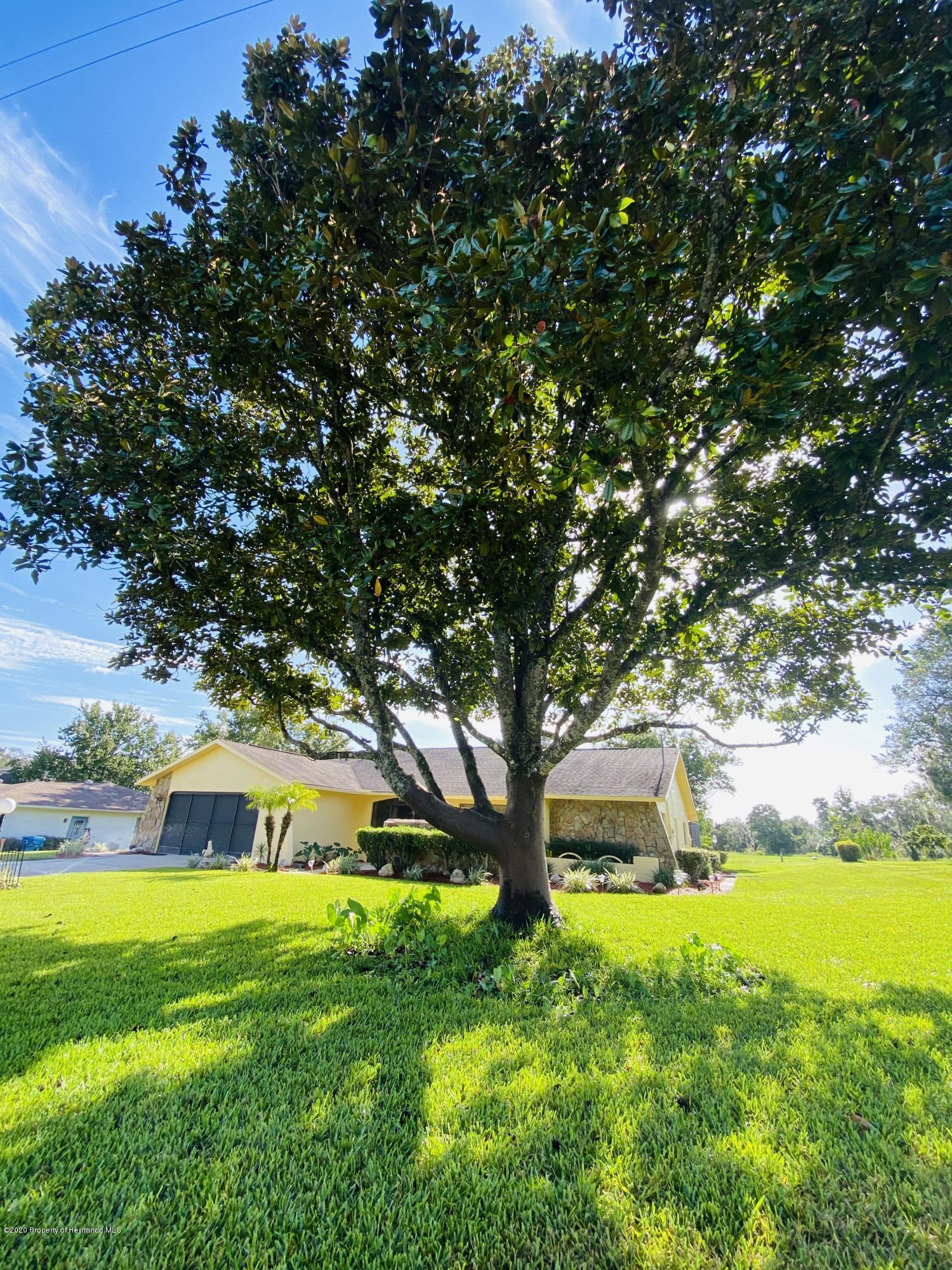 Details for 2297 Ardenwood Drive, Spring Hill, FL 34609