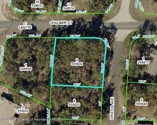 Listing Details for 0 Dristol Avenue, Spring Hill, FL 34609