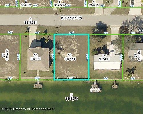 Listing Details for 4032 Bluefish Drive, Hernando Beach, FL 34607