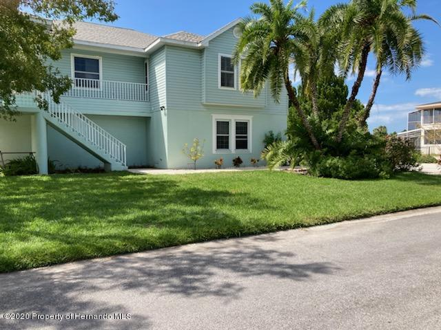 Listing Details for 3207 Hibiscus Drive, Hernando Beach, FL 34607