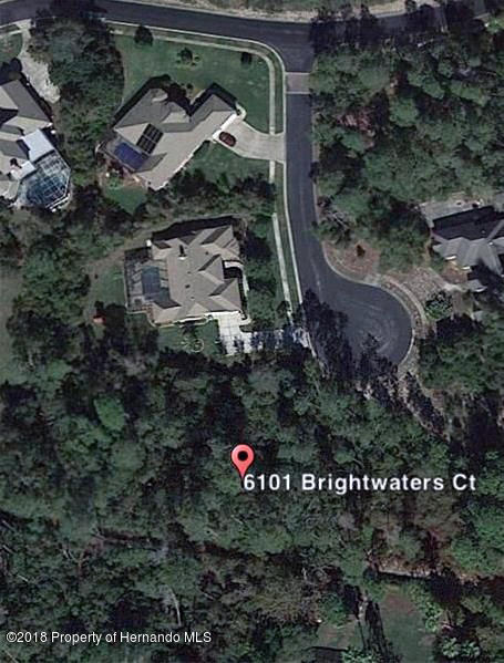 Details for 6101 Brightwaters Court, Weeki Wachee, FL 34607