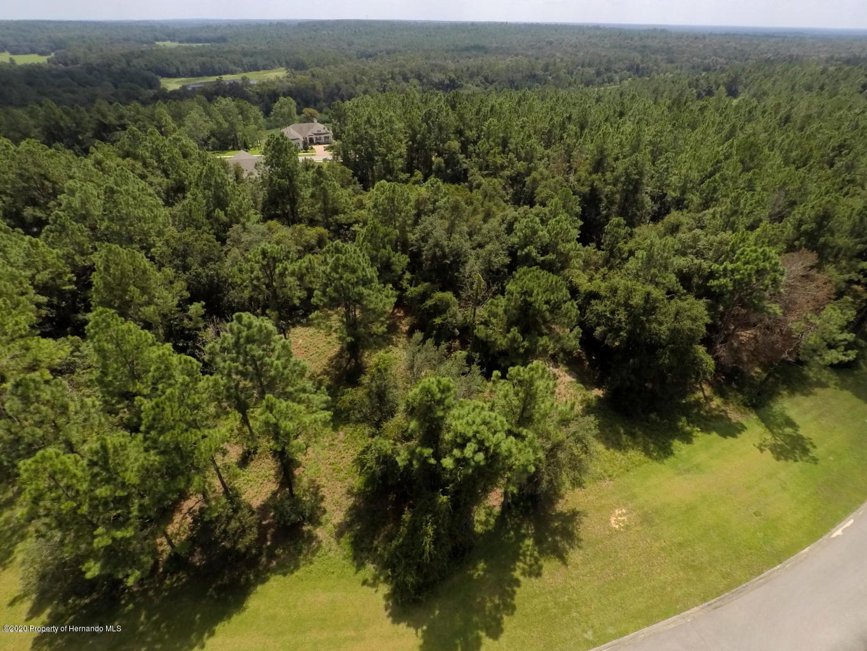 Listing photo id 3 for 1597 Cedar Ridge Drive
