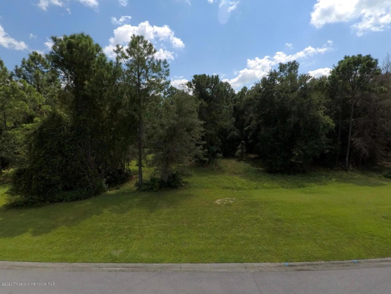 Listing photo id 2 for 1597 Cedar Ridge Drive