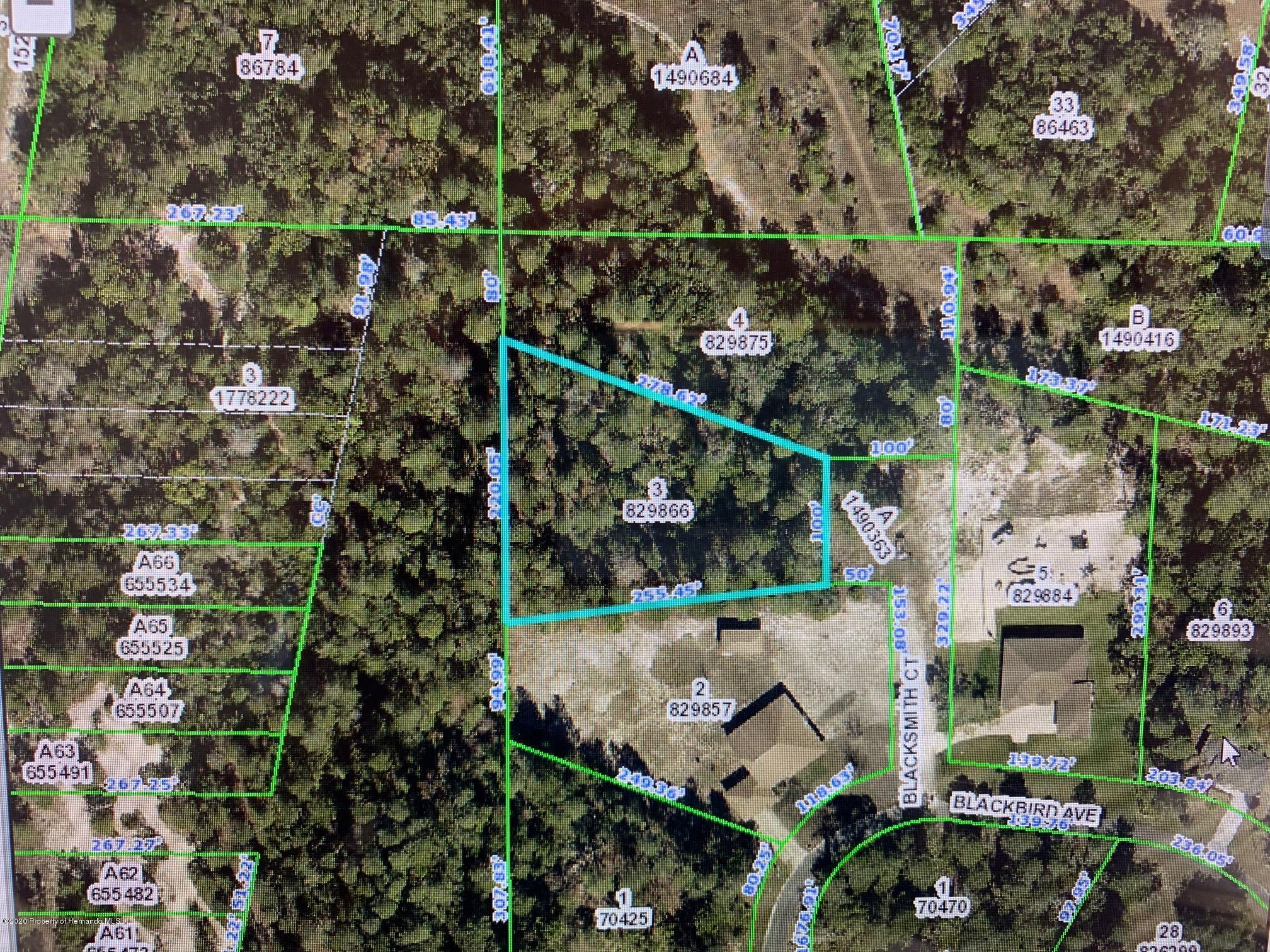 Listing Details for 0 Blacksmith Court, Brooksville, FL 34613