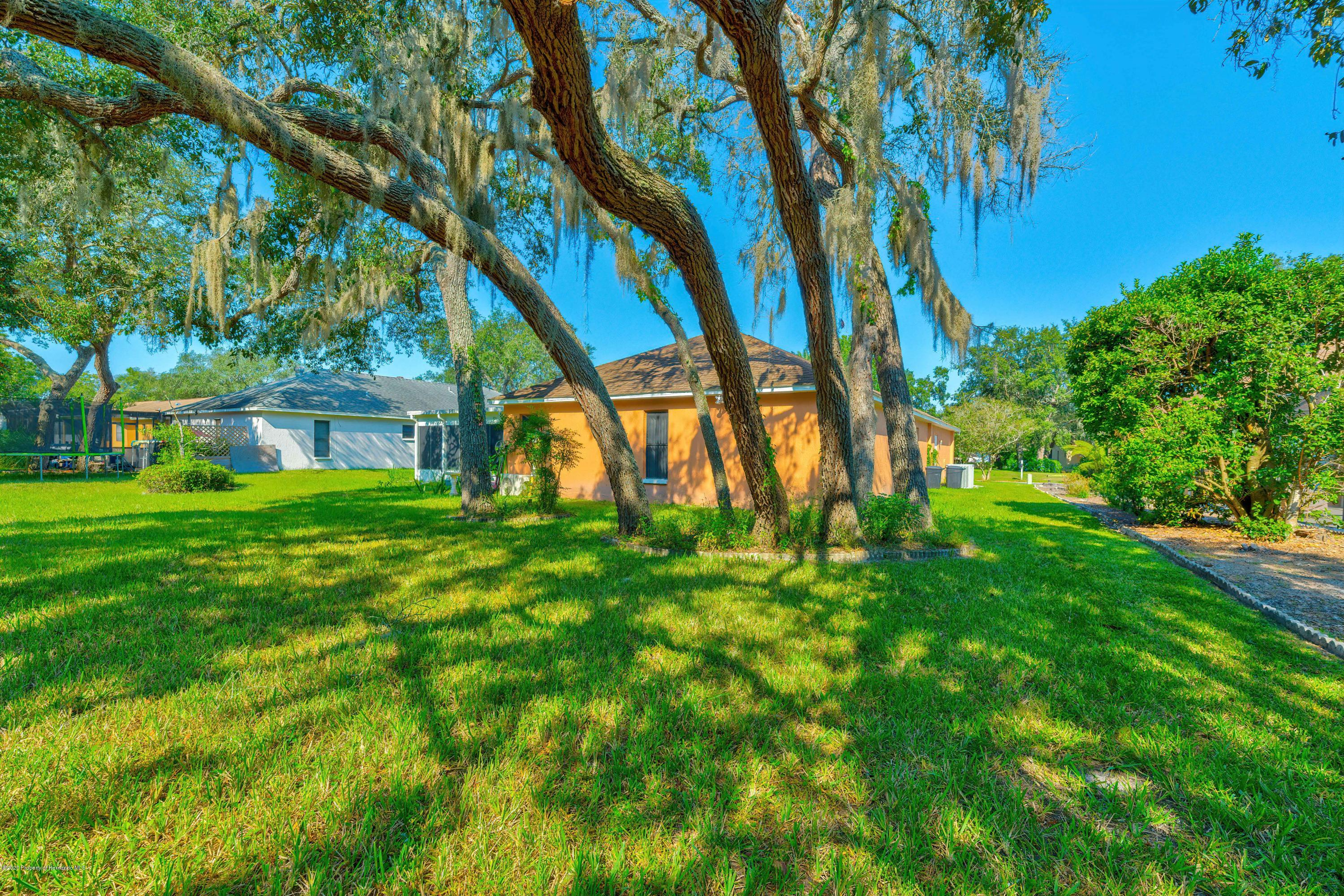 Listing photo id 3 for 4470 Plumosa Street