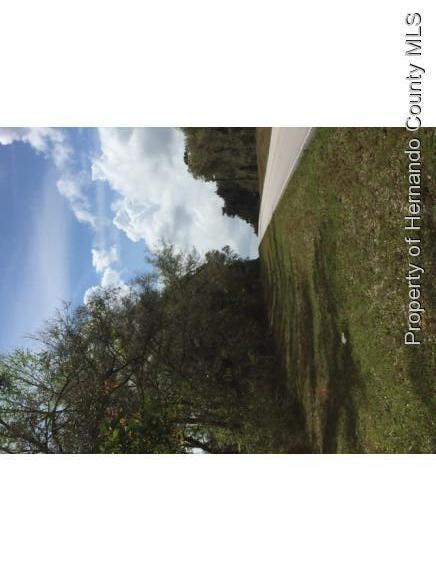 Listing photo id 3 for 0 Citrus Way