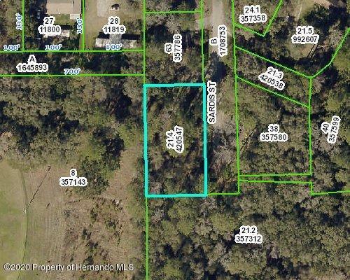 Details for 0 Sardis Street, Brooksville, FL 34601