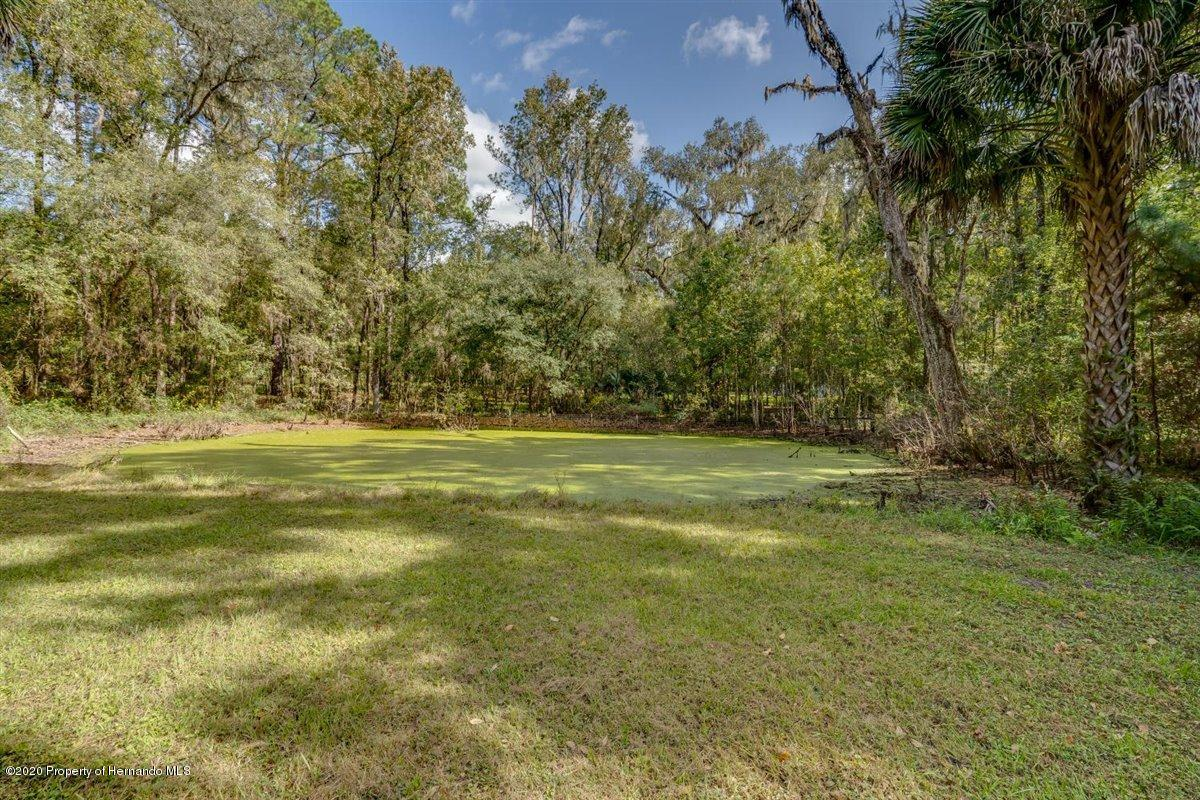 Listing photo id 69 for 25340 Withrow Road