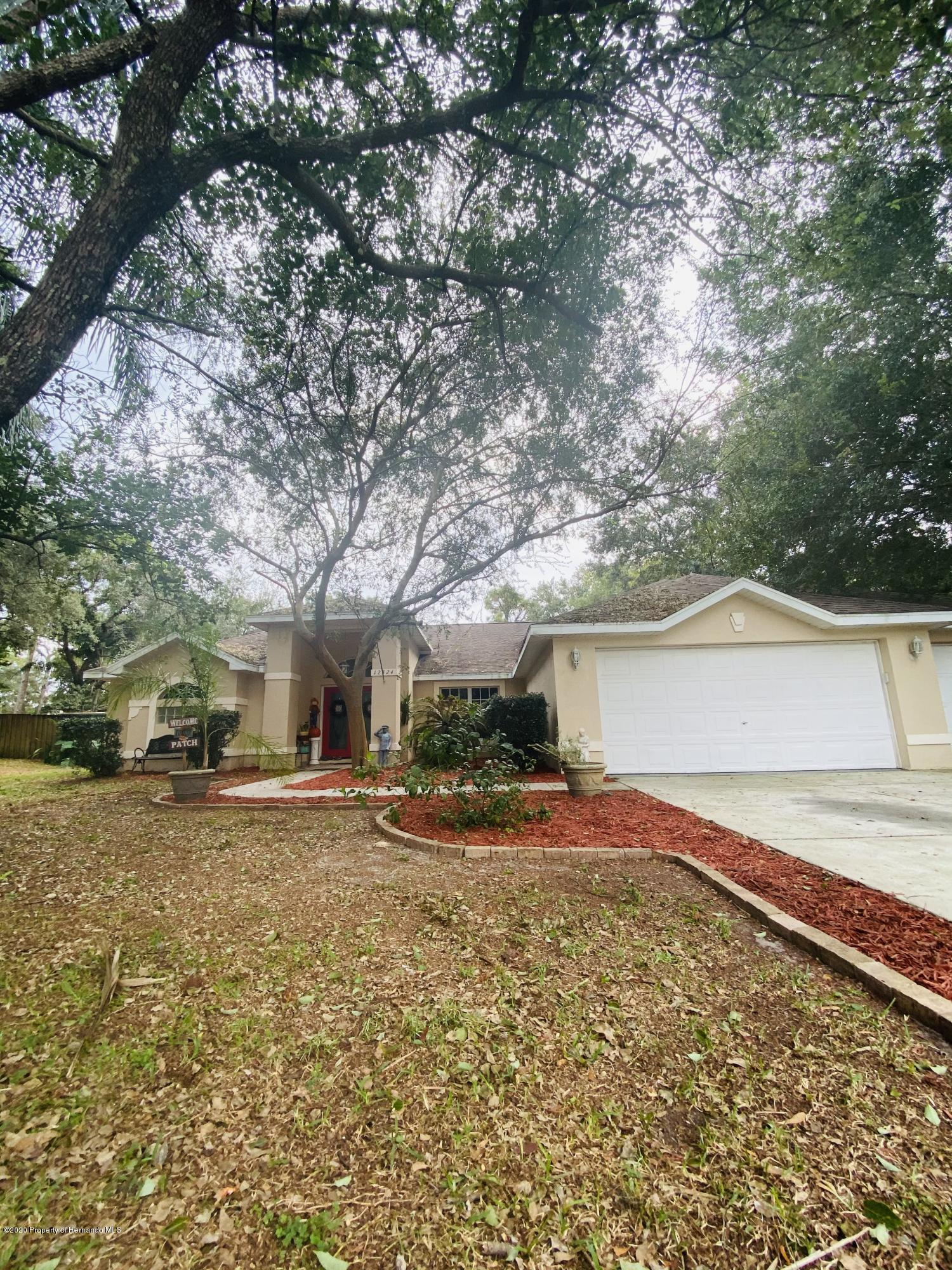 Details for 12324 Padron Boulevard, Spring Hill, FL 34609